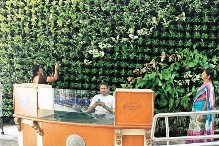 Expensive decorative plants put up for Ivanka Trumps visit stolen in Hyderabad
