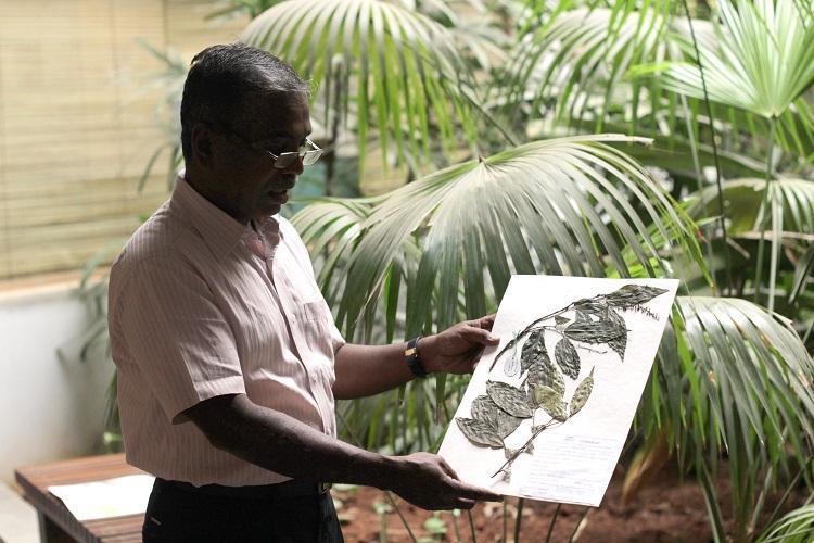 The man who listens to trees Meet the botanist who helped Karnatakas Soligas secure their livelihood