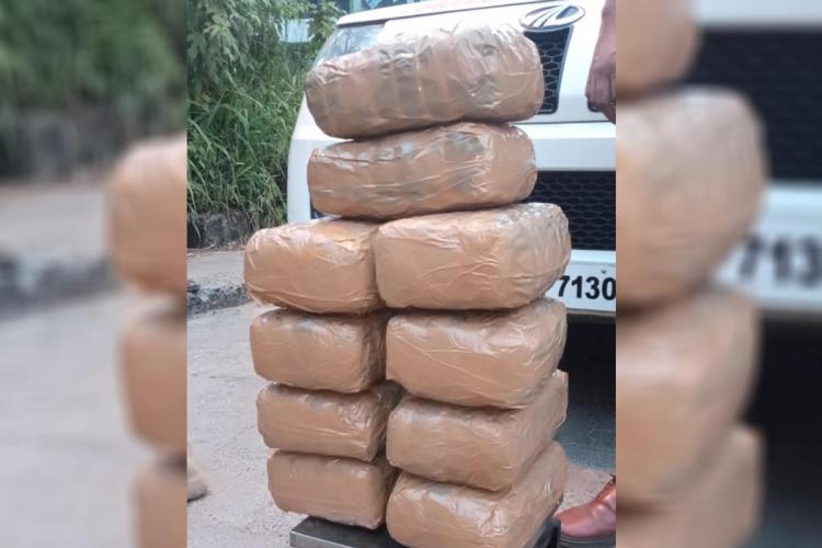 Ganja seized arranged as stacks and is weighed