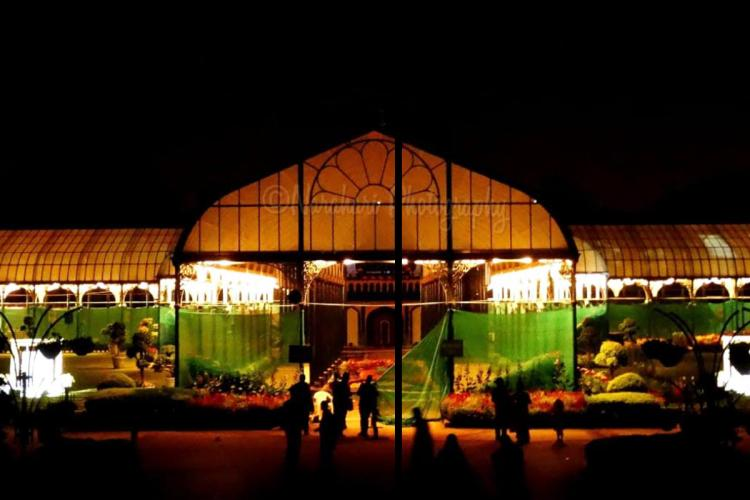 The Glass House lit up at night