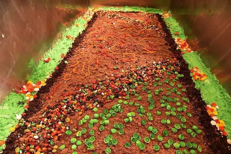 A tonne of delicious dirt Bengaluru bakers set world record for largest dirt pudding cake