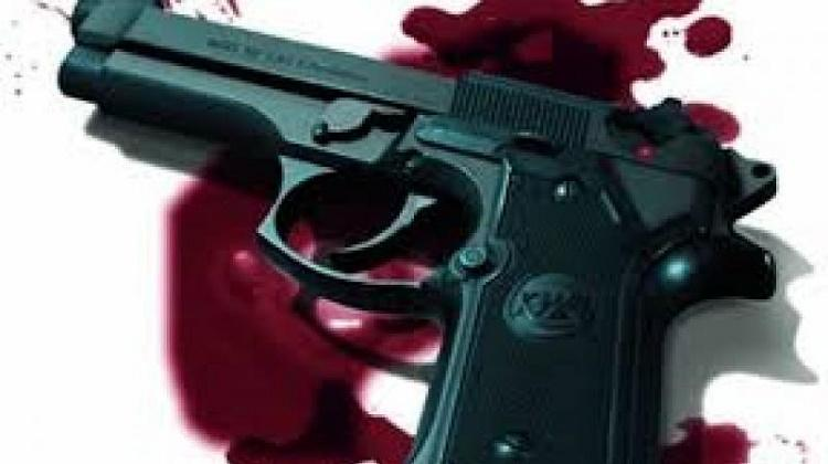Wife claims she did not shoot to kill him