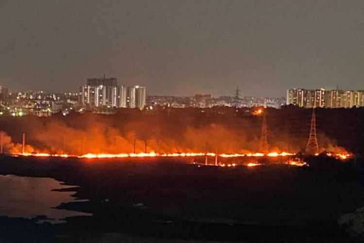 A wildfire spread across the campus of the University of Hyderabad