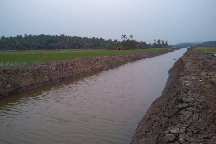 Kerala takes up new project to revive its dying rivers and canals