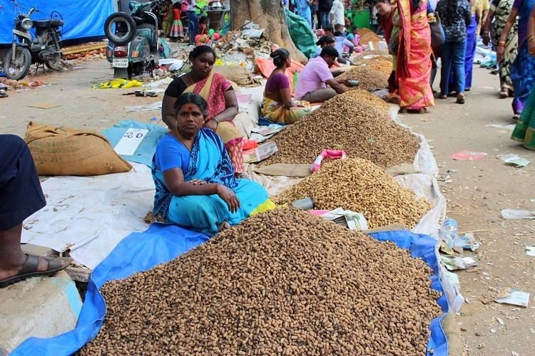 In pictures Going nuts at Bengalurus Kadlekai Parishe a unique groundnut festival
