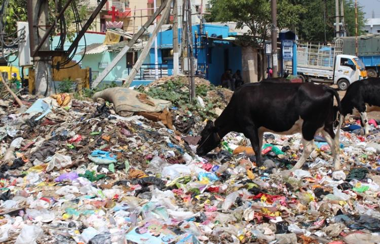 Bengalurus garbage is piling up lets talk about overworked and underpaid garbage collectors