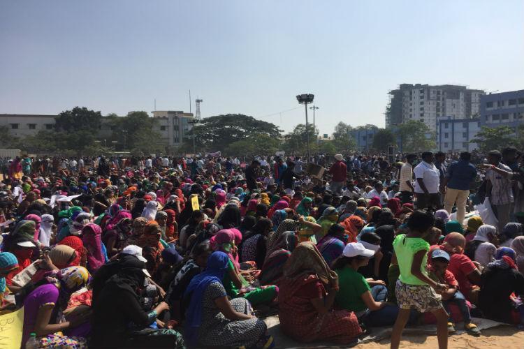 Tamil pride beyond TN Punjabis Rajasthanis join jallikattu protests in Coimbatore