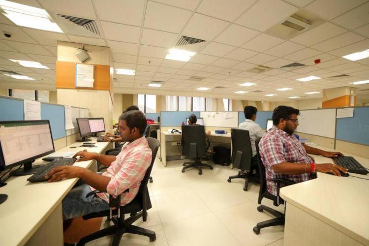 IT employees in office