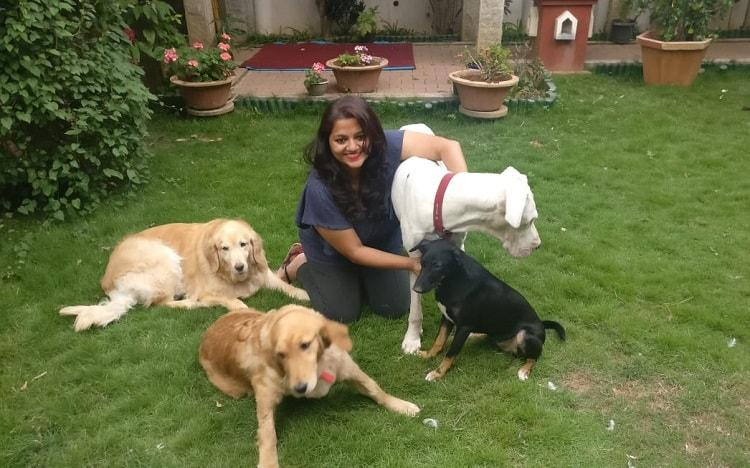 Fighting for my family Bluru dog owner files petition against BBMPs new pet rule