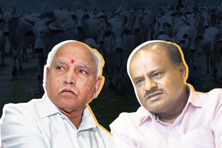 BS Yediyurappa and HD Kumaraswamy in a dark blue background with cows