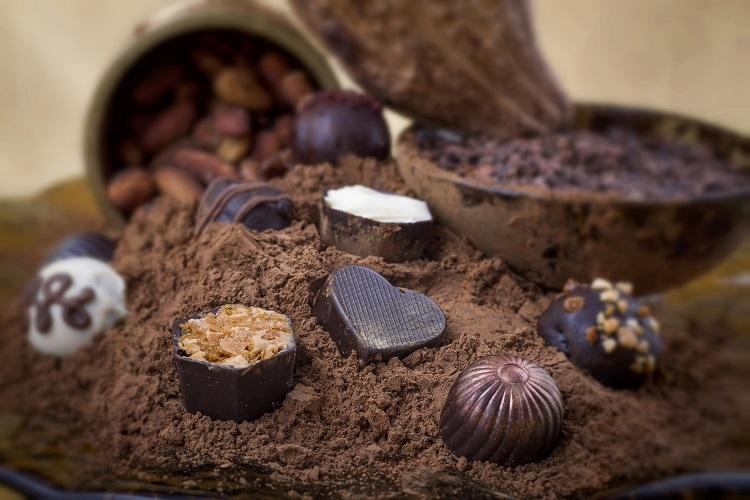 Chocolate is an experience and its healthy if you do it right say these choco inventors