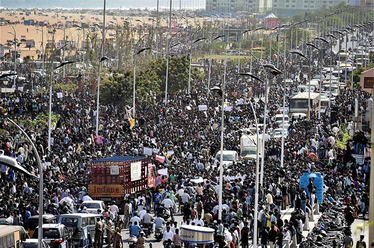 That image of Osama bin Laden poster at Marina It wasnt from jallikattu protest