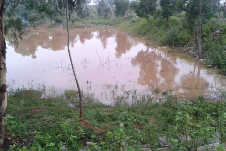 A water body in the Bengaluru University biopark