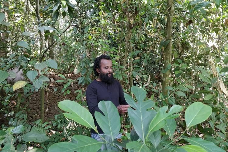 My father and his green haven A mans mission to create a diverse ecosystem in Kerala