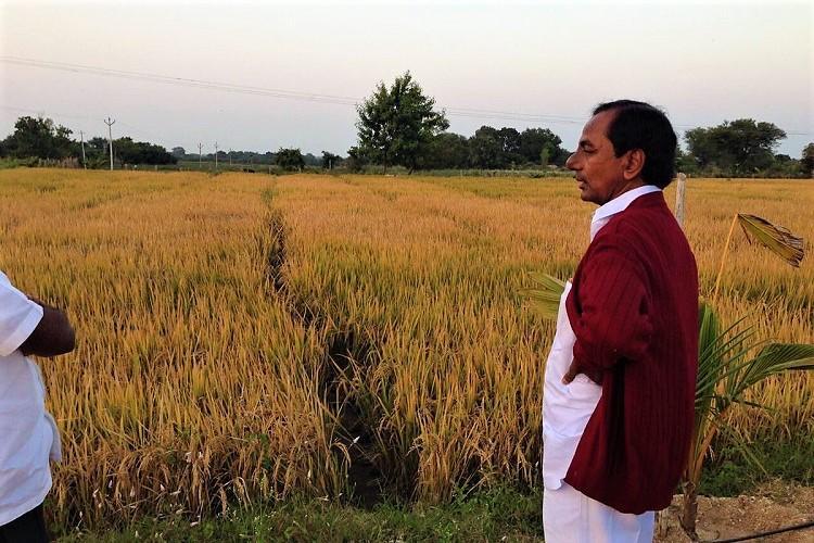 Agri award for Telangana CM KTR posts photos of KCR in farm Congress leader hits back