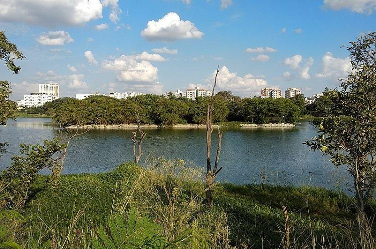 NGT cancels eco-clearance for Godrej high rise project near Bengaluru lake