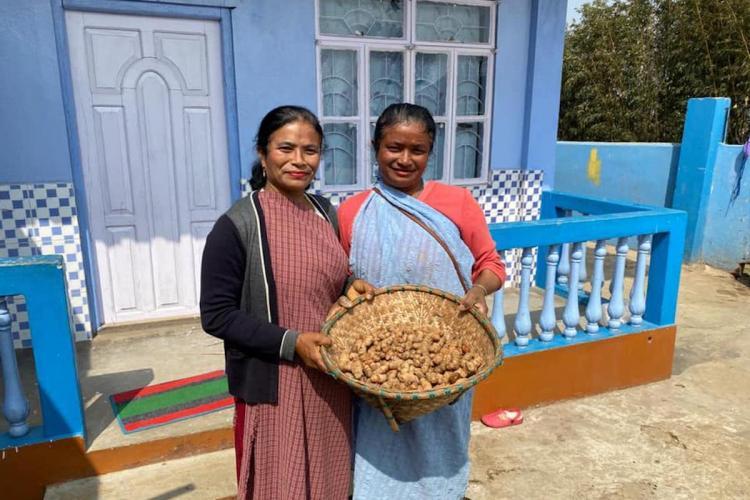 Kalpavriksha shop and donate platform showing Meghalaya turmeric harvested by women