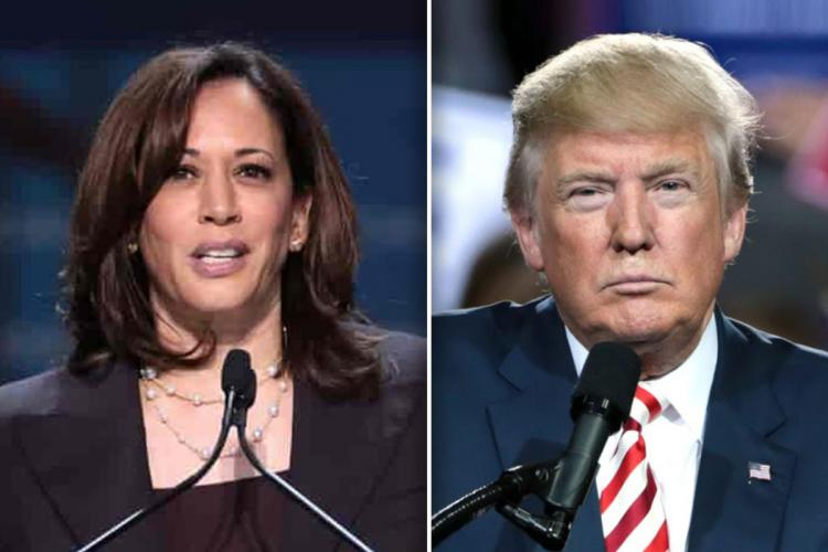 A collage of US Democratic vice presidential nominee Kamala Harris and US President Donald Trump