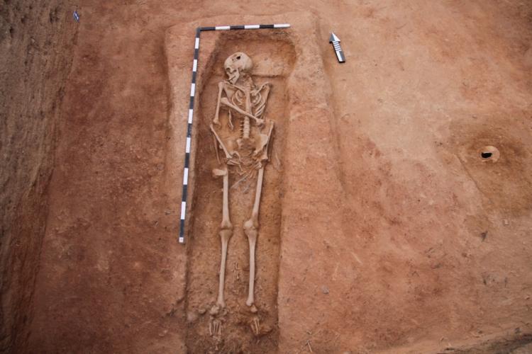 Adult sized human skeleton excavated at Keezhadi