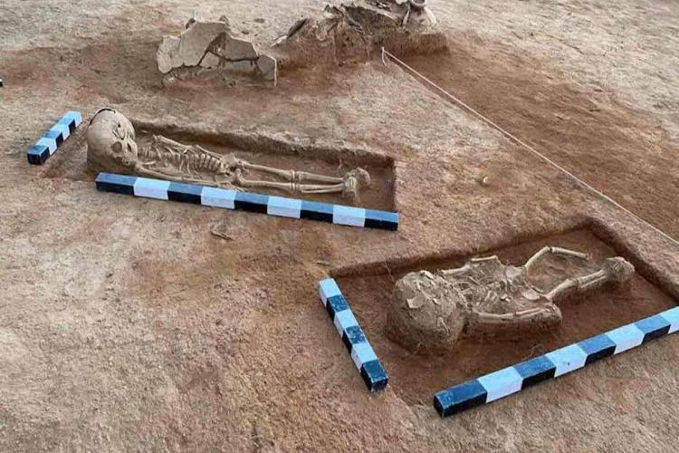 Skeletal remains found in Keezhadi excavation