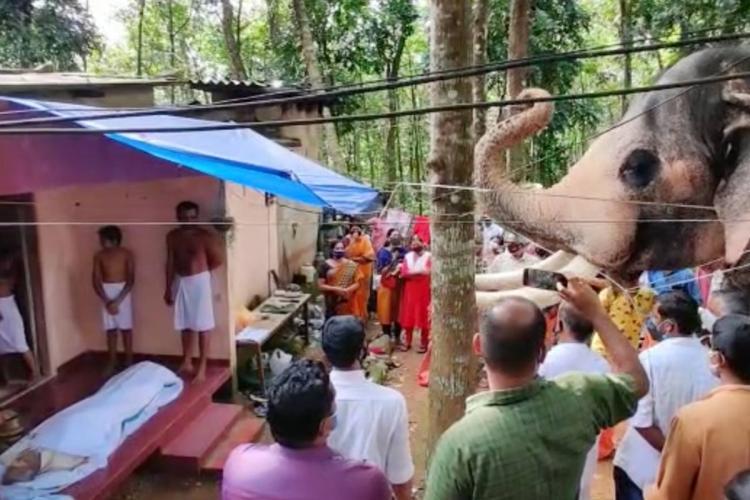 Pallattu Brahmadathan curls his trunk as he pays tribute to his mahout Damodaran Nair alias Omanachettan at his funeral on June 3 in Keralas Kottayam
