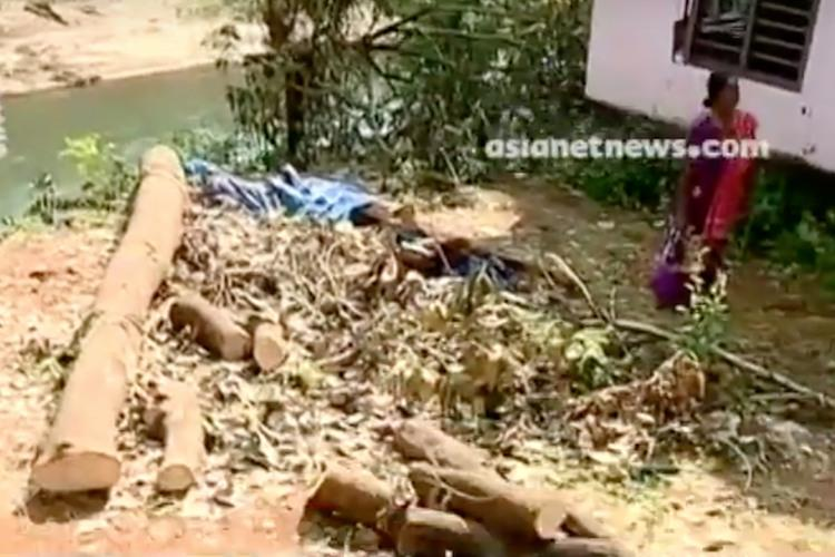 Caught in boundary row Kerala couple arrested by Ktaka Forest Dept for felling trees