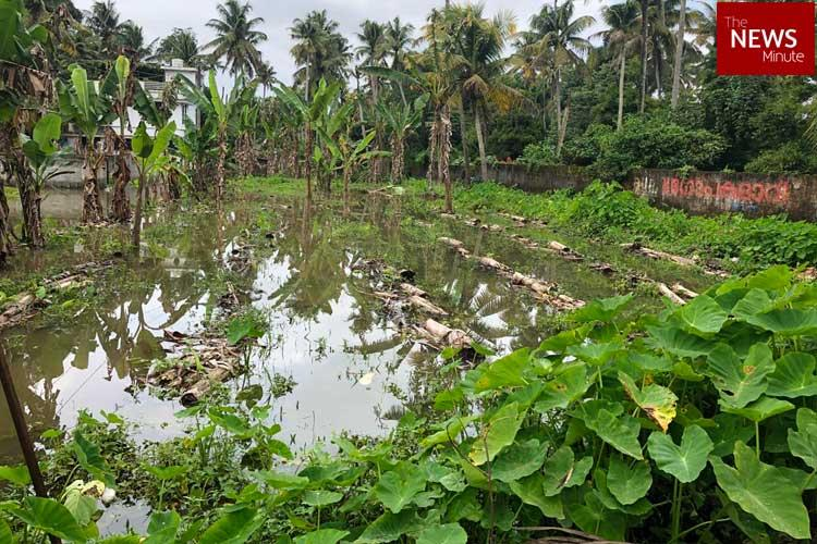 Kerala rains Death toll rises to 29 government assesses damage