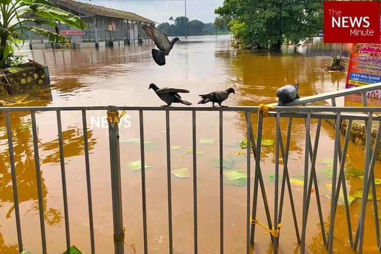 Kerala rains State government announces ex-gratia of Rs 4 lakh