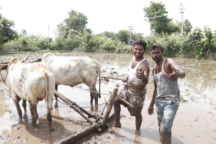 Meet the Telangana farmers whose Kiki Challenge is winning the internet