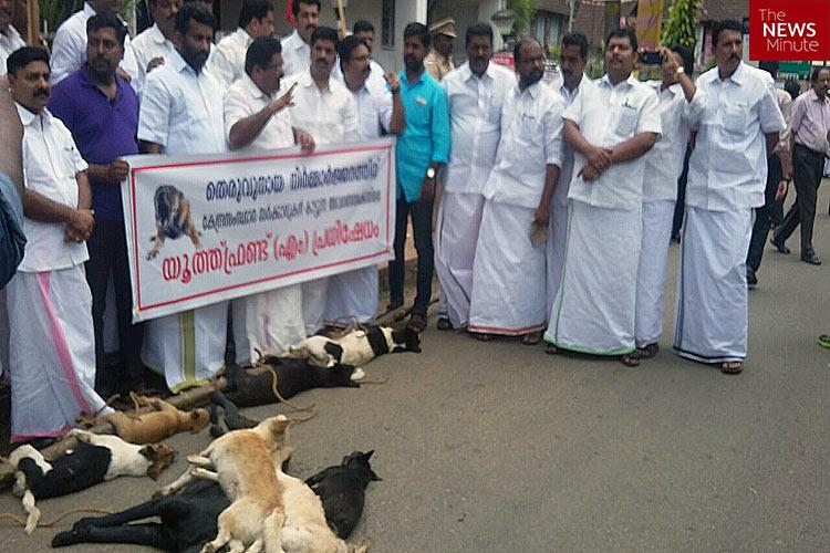Stop being dogmatic Kerala needs a middle ground in the stray dog debate