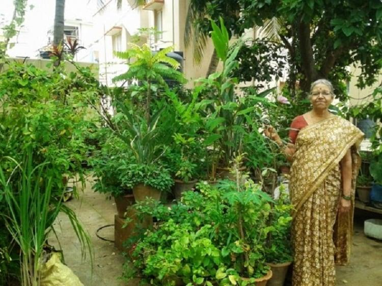 Bengalurus oldest urban farmer leads the way in sustainable living