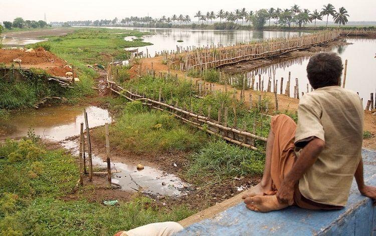 Kole farmers of Kerala reel under unprecedented drought