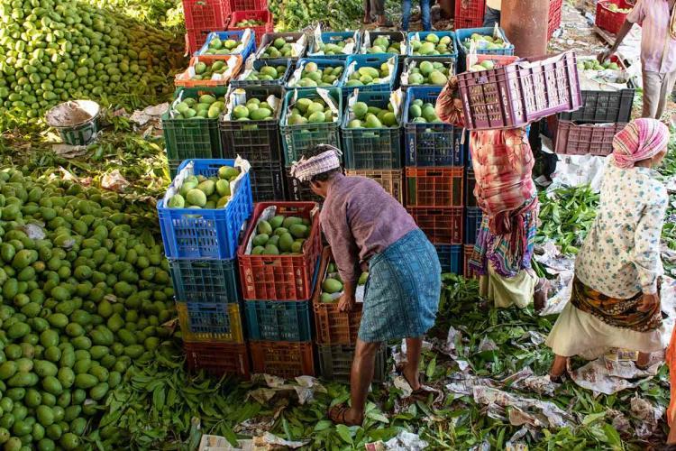 Gaddiannaram fruit market