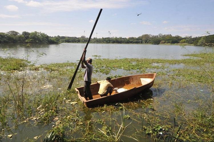 Save Kukkarahalli Lake Mysuru collective opposes constructions on lake bed