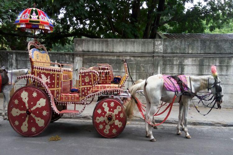Chennai on a chariot Kumar and his horse carriages are remnants of the citys past