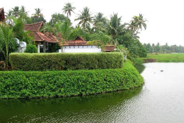 A green image of Keralas famous Kuramakom backwaters