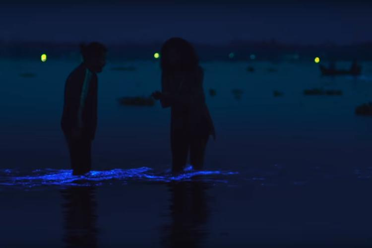 Image result for kumbalangi nights bioluminescence