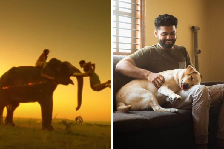 An image from Kumki on the left and an image of actor Rakshit Shetty and a Labrador from 777 Charlie