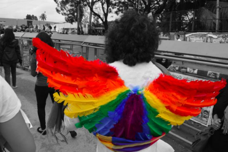 Section 377 Will 2016 usher in a change for the LGBTQ community