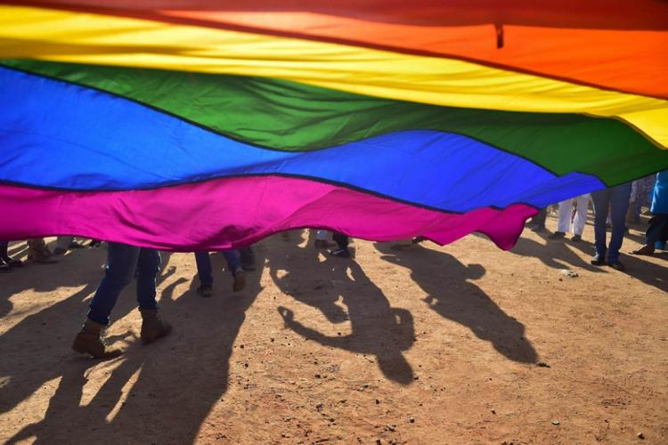 A picture of a flag containing LGBTQ colours