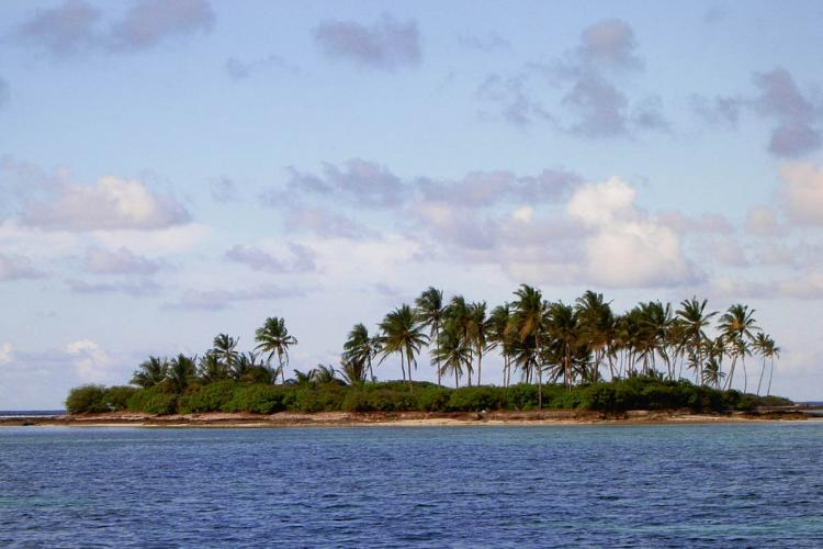 Lakshadweep Island with a few coconut trees and blue water in front of it