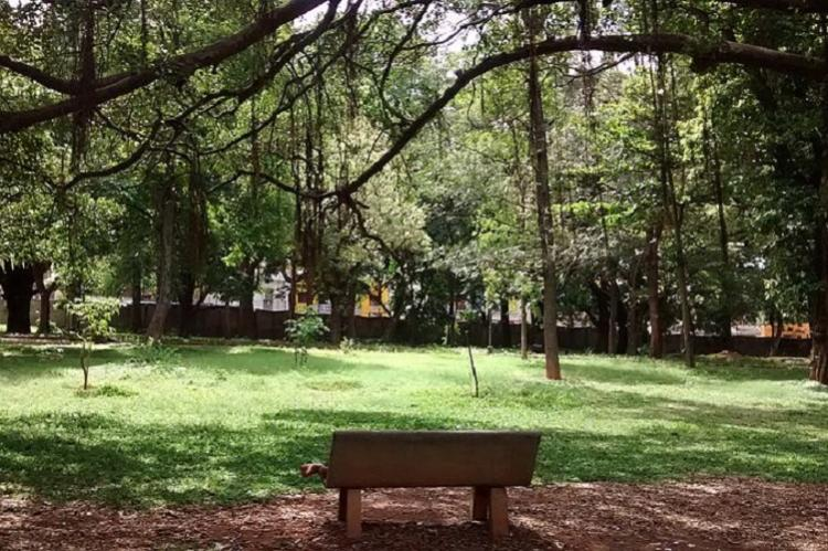 Bengaluru to get open air butterfly park by 2020 at Lalbagh