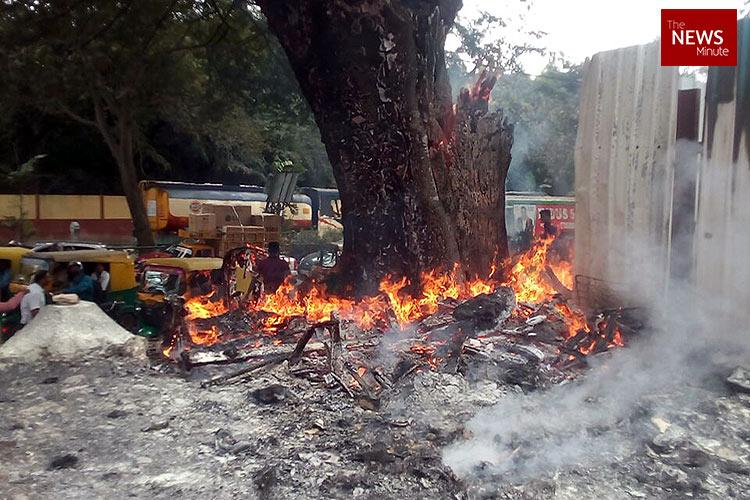 Burning tree slows down traffic on Bengalurus MG Road for hours