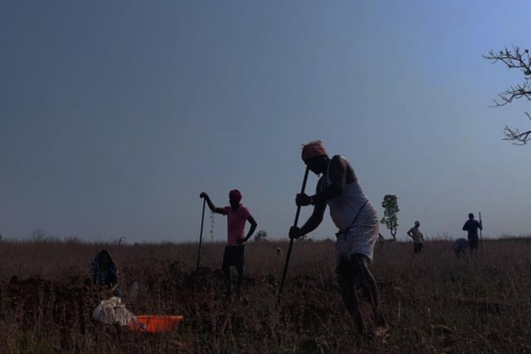 A group of NREGA workers involve works