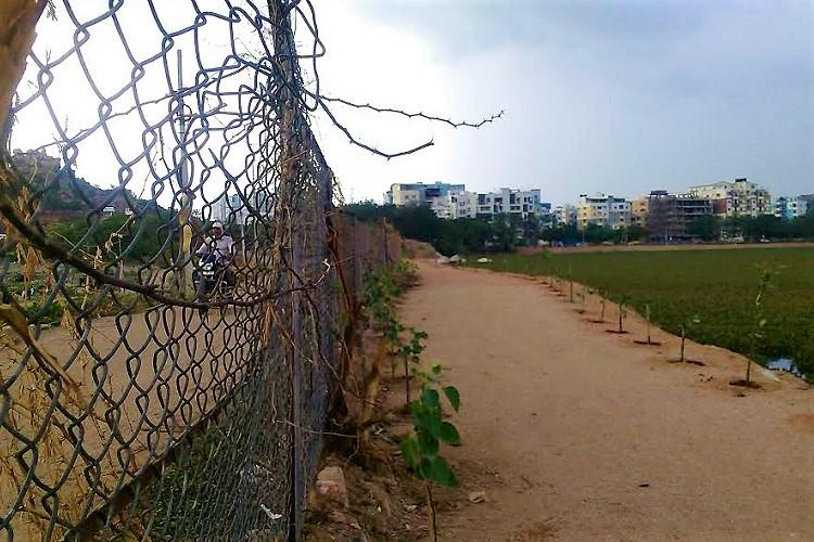 Activists file contempt petition in Hyd HC say GHMC violated stay order on Malkam Lake walkway