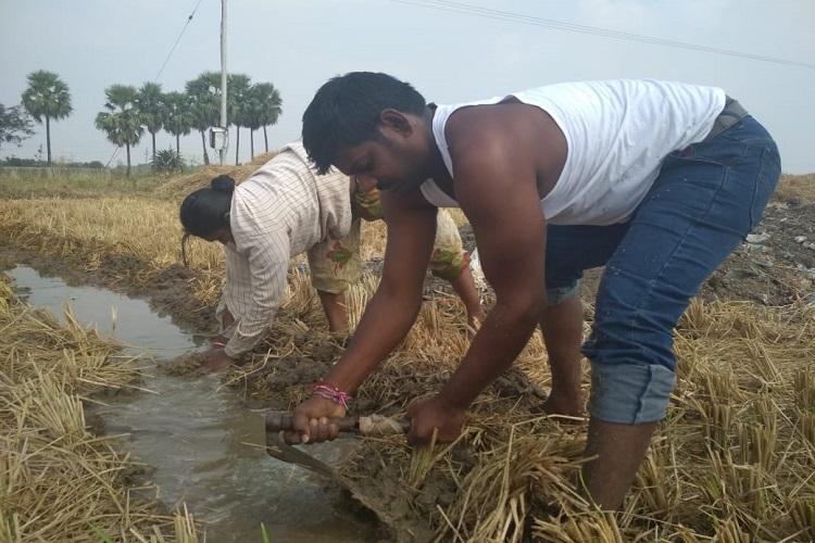 Ground report Why not make Rythu Bandhu a subsidy scheme ask Telangana farmers