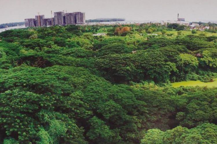 Kerala govts plan to build expo centre near a bird sanctuary raises hackles
