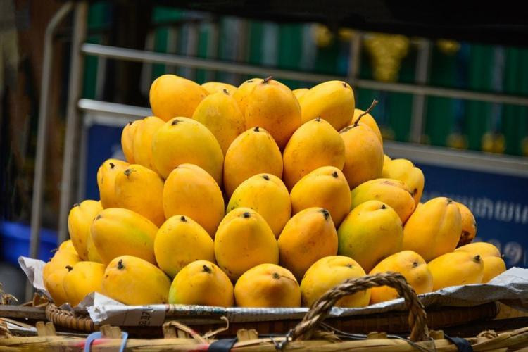File photo of mangoes stacked in a pyramid structure by a vendor for sale
