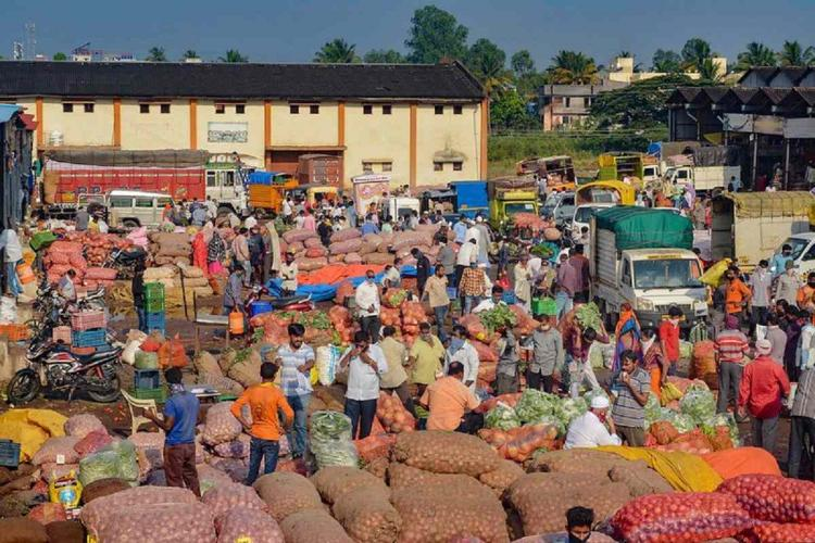 A view of the APMC market during ongoing COVID19 lockdown in Maharashtra