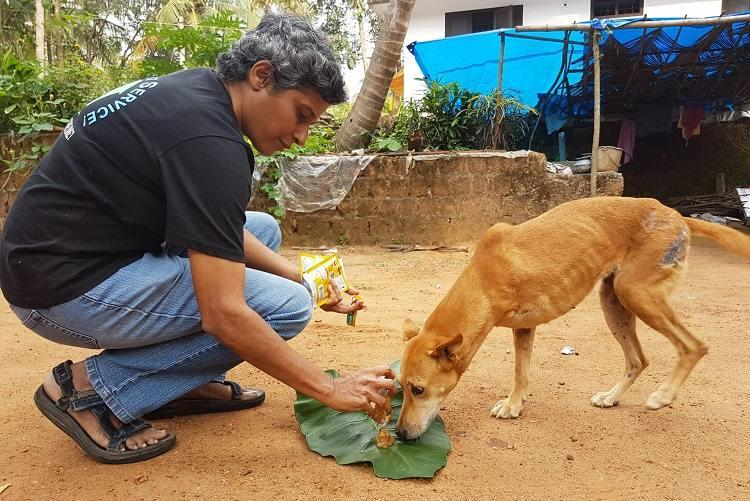 Meet the Coimbatore woman to be awarded by govt for service to stray animals